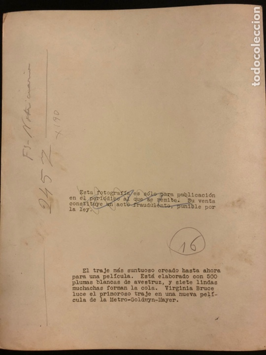 Cine: Foto original MGM de Virginia Bruce 25 x 20 cm - Foto 3 - 190136497