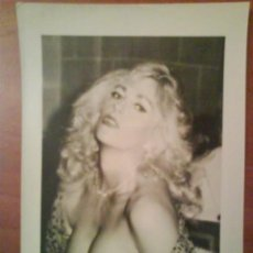 Cine: FOTOGRAFÍA DE EDDY WILLIAMS (EX RUSS MEYER). Lote 190495877