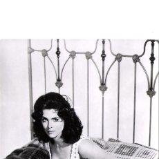 Cine: TINA LOUISE-POSTAL ORIGINAL.-ITALIANA-AÑOS SESENTA-. Lote 191291933