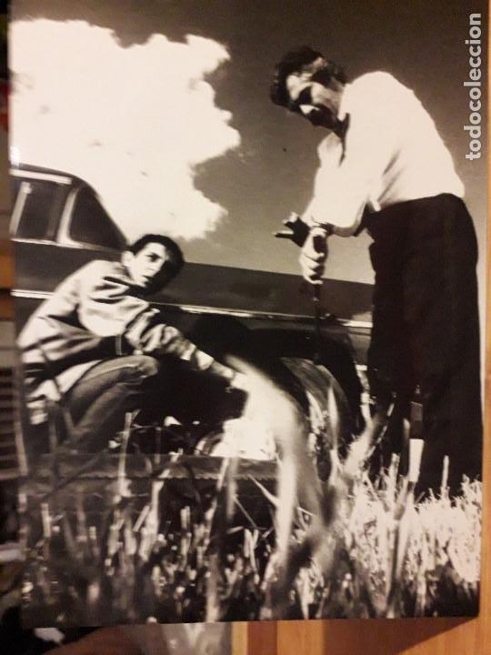 SIS - LE BROUILLARD / ELIA KAZAN / LIVANELI 1988 FOTOGRAFIA DE ESCENA 18X12,5 CMS (Cine - Fotos, Fotocromos y Postales de Películas)