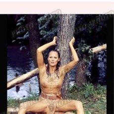Cine: URSULA ANDRESS SEXY PHOTO. Lote 194875162