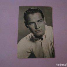 Cine: POSTAL FOTOGRÁFICA DE PAUL NEWMAN. EL LARGO Y CÁLIDO VERANO AÑO 1960 ED. ARCHIVO BERMEJO. Lote 195429497