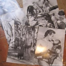 Cine: 6 GRANDES FOTOGRAFIAS DE TARZAN Y SU FAMILIA. 43 X 31,5 CM. Lote 206525896
