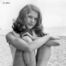 Cine: FOTO LOIS CHILES SEXY #2 - LOIS CHILES WAY WE WERE VINTAGE PHOTO. Lote 211438990