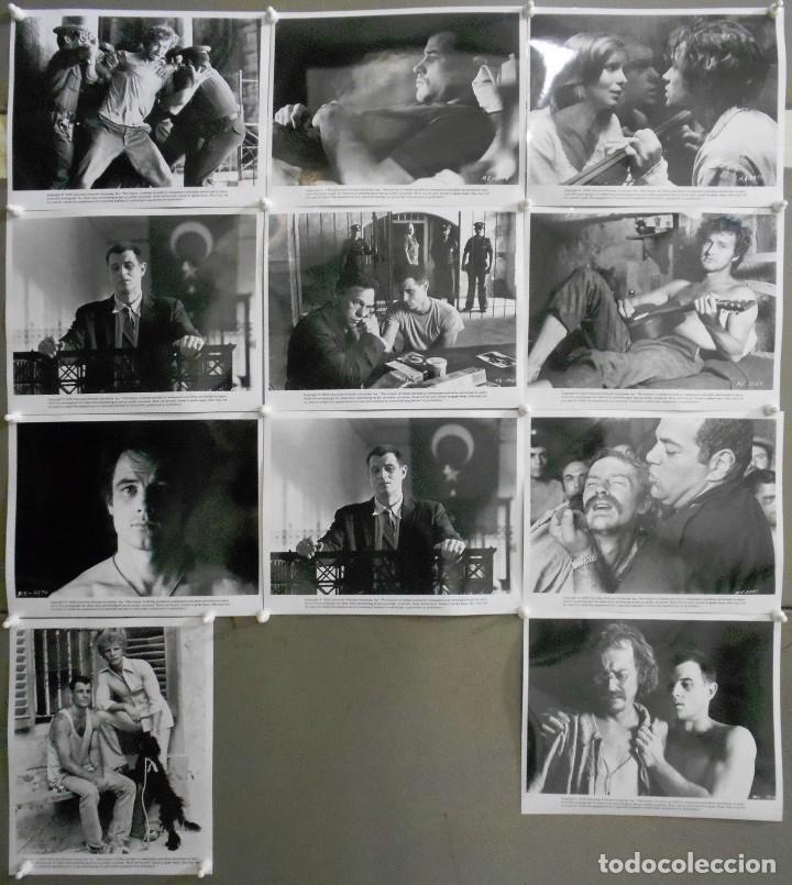 F24162D ALAN PARKER EL EXPRESO DE MEDIANOCHE 10 FOTOS B/N ORIGINALES AMERICANAS (Cine - Fotos, Fotocromos y Postales de Películas)
