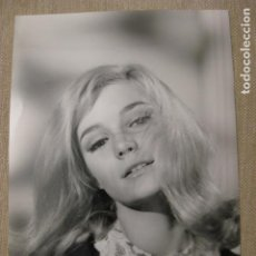 Cine: YVETTE MIMIEUX - FOTO ORIGINAL B/N - HOLLYWOOD STAR METRO GOLDWYN MAYER. Lote 221841346