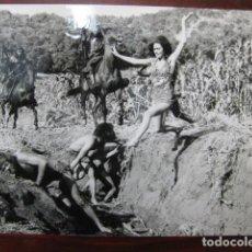 Cine: EL PLANETA DE LOS SIMIOS - FOTO ORIGINAL B/N - LINDA HARRISON PLANET OF THE APES. Lote 236305935