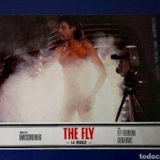Cine: THE FLY. Lote 269843483