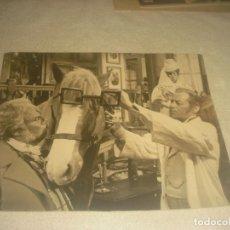 Cine: ANTIGUA FOTO DE SAMANTHA EGGAR Y R, HARRISON , DR. DOOLITLE .25 X 20 CM .. Lote 275987333