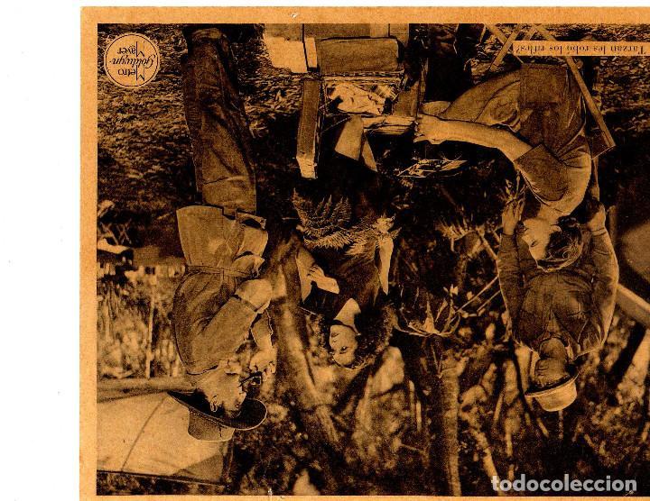 Cine: FOTOS 20 X 25 B/N DE LA PELICULA TARZAN Y SU HIJO LOTE ( 10 ) - Foto 5 - 293668813