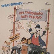 Cine: WALT DISNEY / UN CANDIDATO MUY PELUDO / 1976 / 21,5 X 28,5 / ORIGINAL. Lote 26944402
