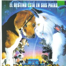 Cine: COMO PERROS Y GATOS. GUIA ORIGINAL ESTRENO.. Lote 36345579