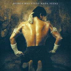 Cine: ONG - BAK (EL GUERRERO MUAY THAI). ARTES MARCIALES. PRACHYA PINKAEW. TONY JAA. TAILANDIA.. Lote 98815763