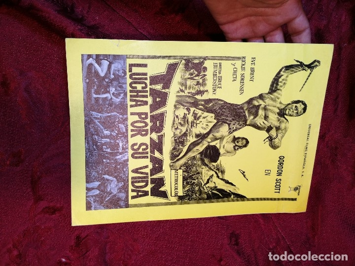 Cine: TARZAN LUCHA POR SU VIDA. GORDON SCOTT. AÑO 1977.GACETILLA UNIVERSAL FILMS ESPAÑOLA - Foto 2 - 126188167