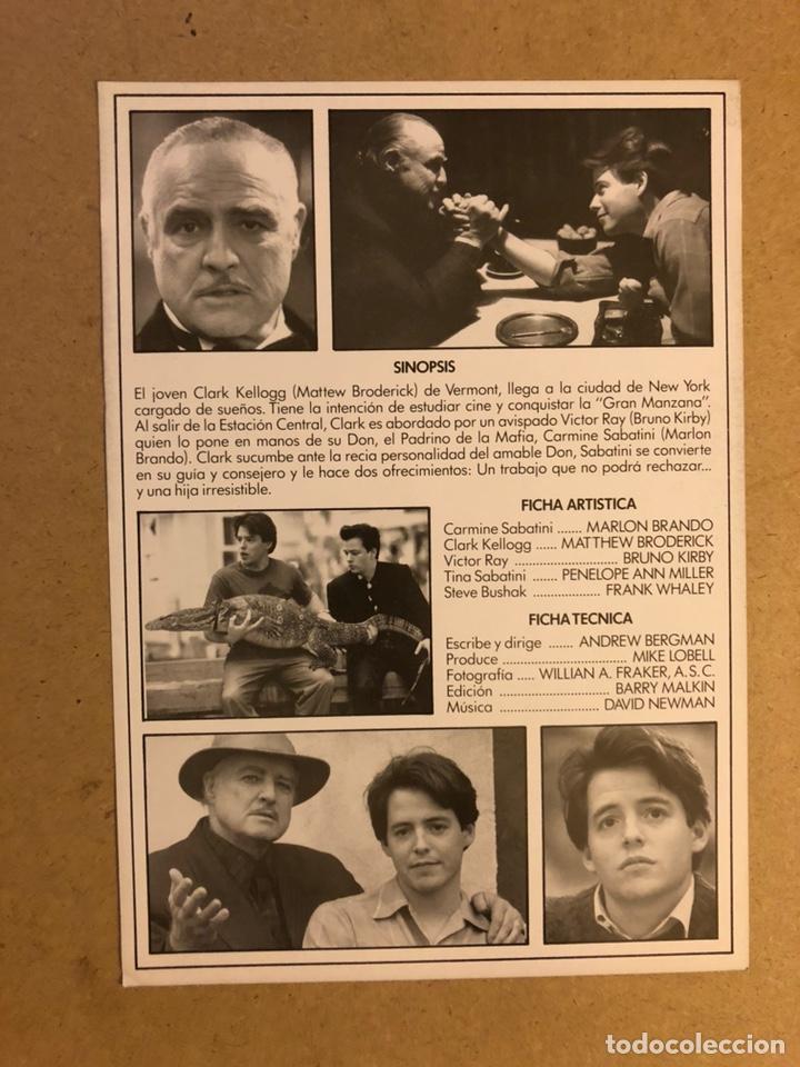 Cine: EL NOVATO (MARLON BRANDO, MATTHEW BRODERICK,..). GUÍA PUBLICITARIA DE LA PELÍCULA. - Foto 2 - 162480113