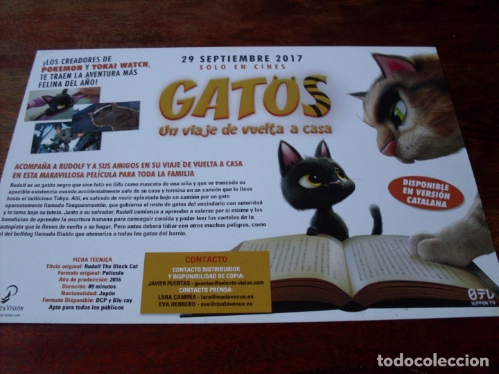 Cine: gatos un viaje de vuelta a casa - animacion - guia original selecta vision año 2017 - Foto 2 - 180192173