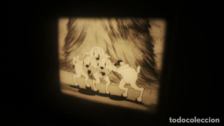 Cine: BIG BAD WOLF , FUN CARTOON PELÍCULA 16MM-OLD MOVIE- RETRO VINTAGE FILM - Foto 29 - 160548018