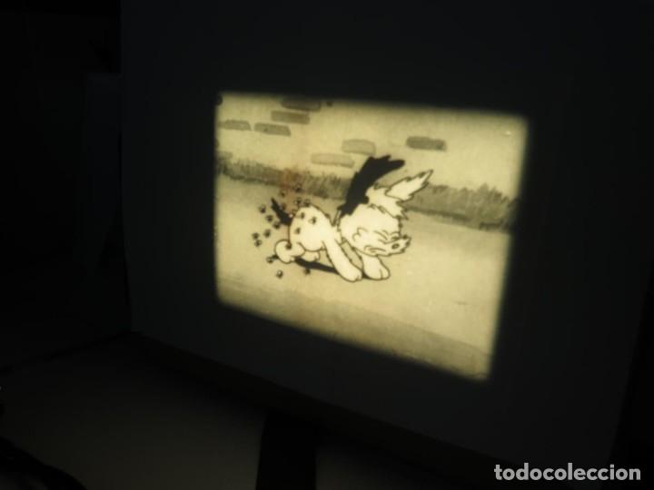 Cine: PUDDY – THE PUP PELÍCULA-16MM - OLD MOVIE - RETRO VINTAGE FILM - Foto 16 - 172202770