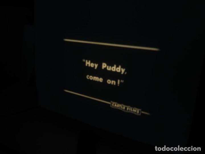 Cine: PUDDY – THE PUP PELÍCULA-16MM - OLD MOVIE - RETRO VINTAGE FILM - Foto 17 - 172202770