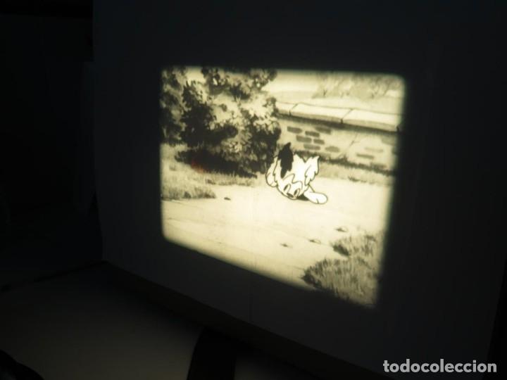 Cine: PUDDY – THE PUP PELÍCULA-16MM - OLD MOVIE - RETRO VINTAGE FILM - Foto 35 - 172202770