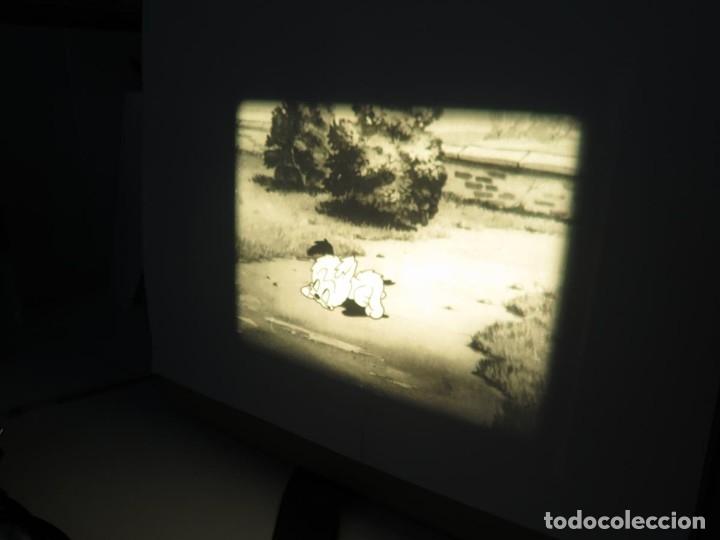 Cine: PUDDY – THE PUP PELÍCULA-16MM - OLD MOVIE - RETRO VINTAGE FILM - Foto 36 - 172202770