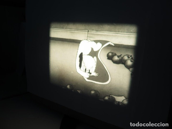 Cine: PUDDY – THE PUP PELÍCULA-16MM - OLD MOVIE - RETRO VINTAGE FILM - Foto 41 - 172202770