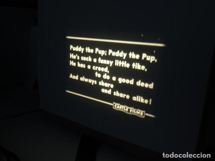 Cine: PUDDY – THE PUP PELÍCULA-16MM - OLD MOVIE - RETRO VINTAGE FILM - Foto 66 - 172202770
