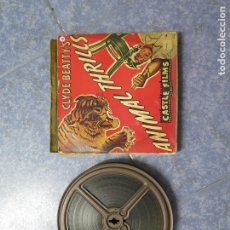 Cine: CLYDE BEATTYS-ANIMAL THRILLS, PELÍCULA 16MM-OLD MOVIE- RETRO - VINTAGE FILM. Lote 172203104