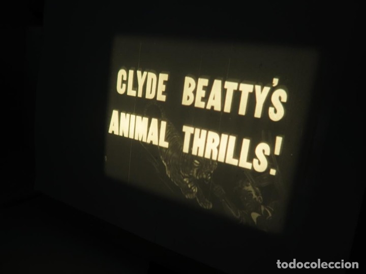 Cine: CLYDE BEATTYS-ANIMAL THRILLS, PELÍCULA 16MM-OLD MOVIE-RETRO - VINTAGE FILM - Foto 8 - 172203104