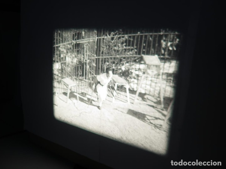 Cine: CLYDE BEATTYS-ANIMAL THRILLS, PELÍCULA 16MM-OLD MOVIE-RETRO - VINTAGE FILM - Foto 31 - 172203104