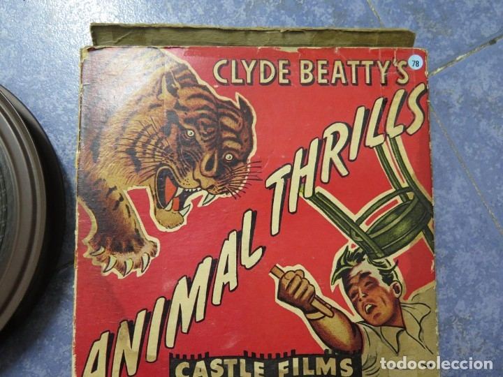 Cine: CLYDE BEATTYS-ANIMAL THRILLS, PELÍCULA 16MM-OLD MOVIE-RETRO - VINTAGE FILM - Foto 111 - 172203104