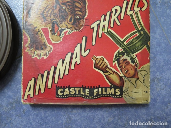 Cine: CLYDE BEATTYS-ANIMAL THRILLS, PELÍCULA 16MM-OLD MOVIE-RETRO - VINTAGE FILM - Foto 112 - 172203104