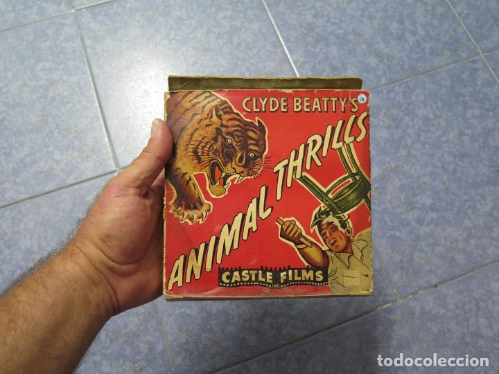 Cine: CLYDE BEATTYS-ANIMAL THRILLS, PELÍCULA 16MM-OLD MOVIE-RETRO - VINTAGE FILM - Foto 117 - 172203104