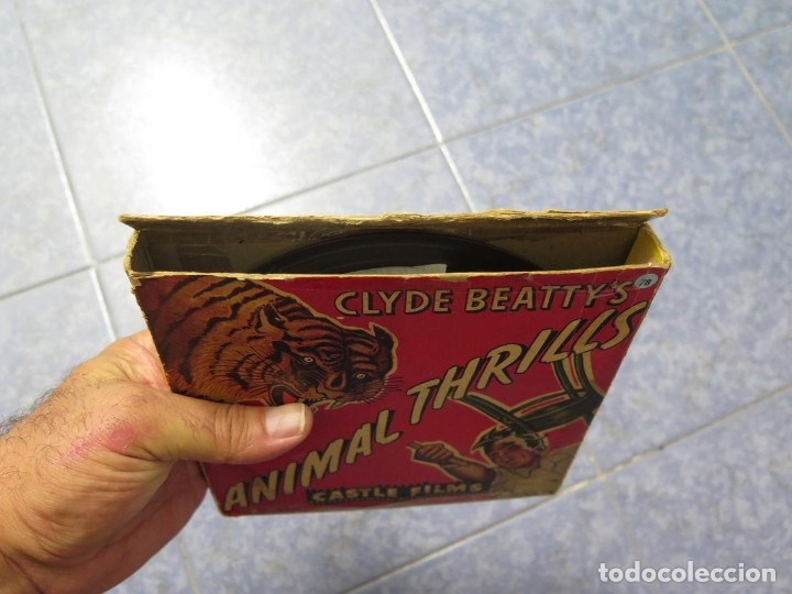 Cine: CLYDE BEATTYS-ANIMAL THRILLS, PELÍCULA 16MM-OLD MOVIE-RETRO - VINTAGE FILM - Foto 118 - 172203104