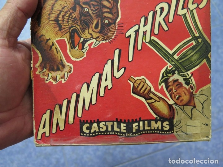 Cine: CLYDE BEATTYS-ANIMAL THRILLS, PELÍCULA 16MM-OLD MOVIE-RETRO - VINTAGE FILM - Foto 120 - 172203104