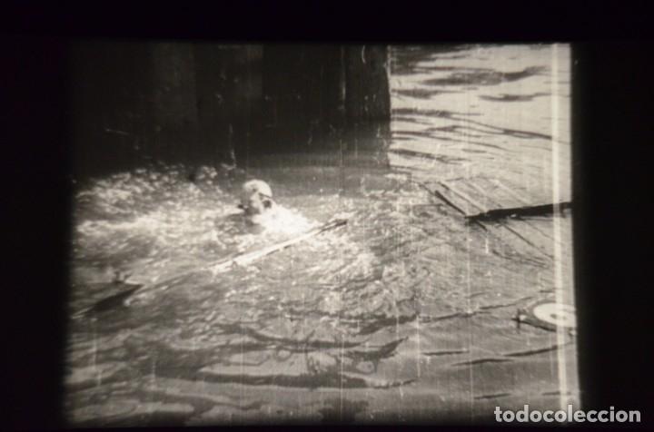 Cine: CARRERAS DE CANOAS - Foto 56 - 181862673