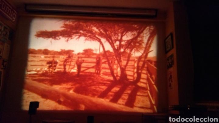 Cine: DOS TEJANOS EN LA SELVA - Foto 8 - 192610850