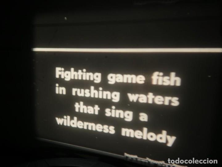 Cine: FISHING THRILLS (EMOCIONES DE PESCA) DOCUMENTAL 16 MM -MUDO - RETRO VINTAGE FILM - Foto 3 - 193341708