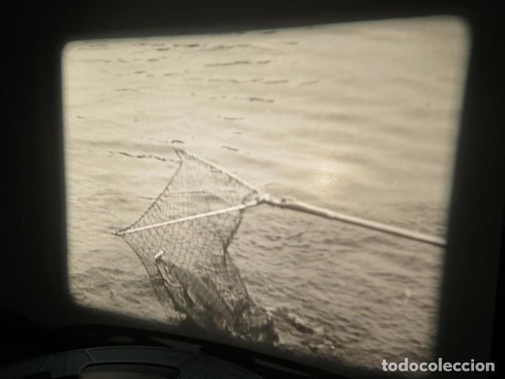 Cine: FISHING THRILLS (EMOCIONES DE PESCA) DOCUMENTAL 16 MM -MUDO - RETRO VINTAGE FILM - Foto 40 - 193341708