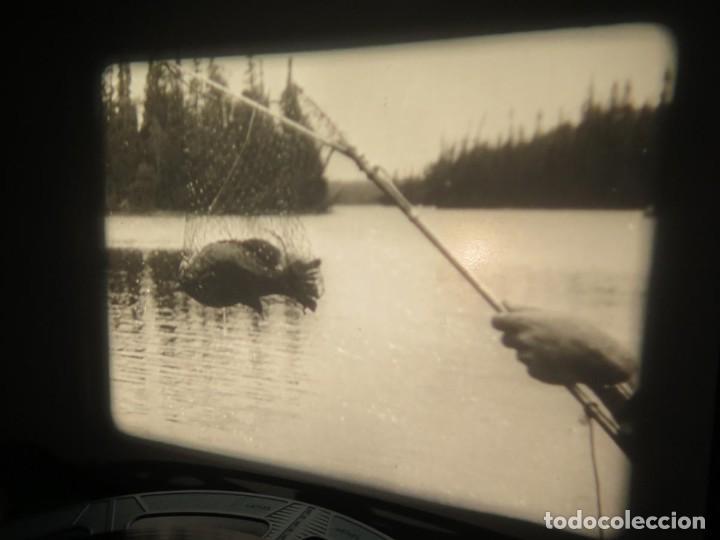 Cine: FISHING THRILLS (EMOCIONES DE PESCA) DOCUMENTAL 16 MM -MUDO - RETRO VINTAGE FILM - Foto 41 - 193341708