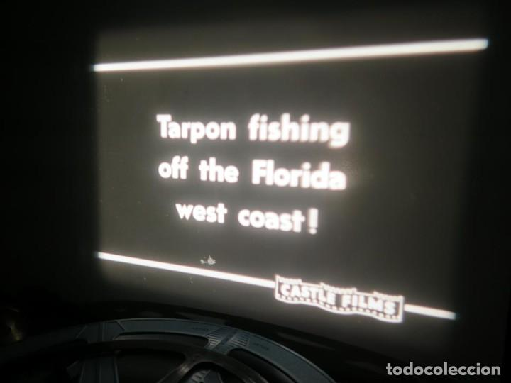 Cine: FISHING THRILLS (EMOCIONES DE PESCA) DOCUMENTAL 16 MM -MUDO - RETRO VINTAGE FILM - Foto 49 - 193341708