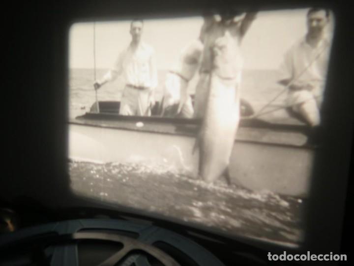 Cine: FISHING THRILLS (EMOCIONES DE PESCA) DOCUMENTAL 16 MM -MUDO - RETRO VINTAGE FILM - Foto 59 - 193341708