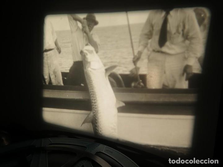 Cine: FISHING THRILLS (EMOCIONES DE PESCA) DOCUMENTAL 16 MM -MUDO - RETRO VINTAGE FILM - Foto 60 - 193341708