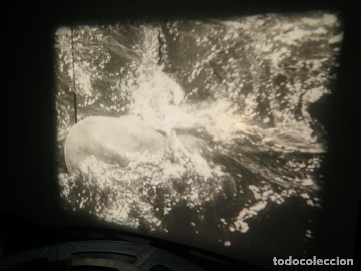 Cine: FISHING THRILLS (EMOCIONES DE PESCA) DOCUMENTAL 16 MM -MUDO - RETRO VINTAGE FILM - Foto 71 - 193341708