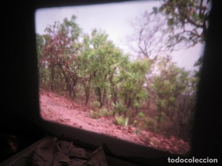 Cine: ANTIGUA BOBINA PELÍCULA-FILMACIONES -AMATEUR-SIERRA LEONA-AÑOS 80 16 MM, RETRO VINTAGE FILM - Foto 9 - 194300253