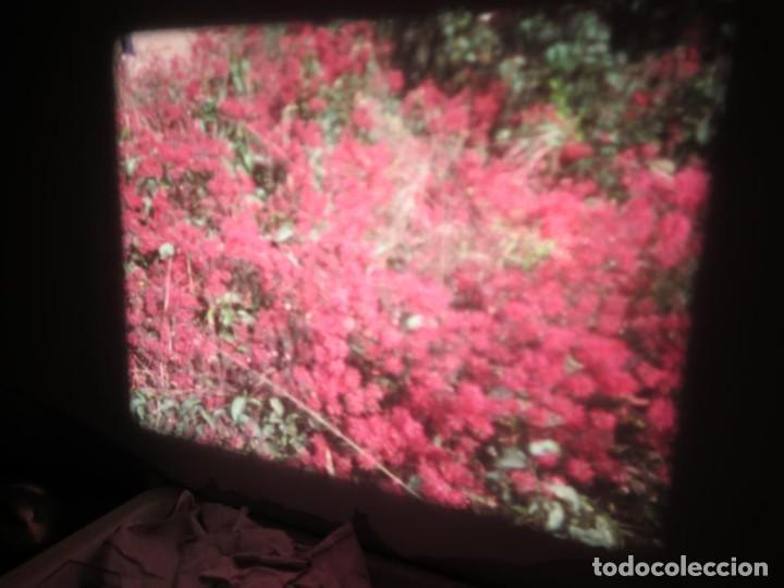 Cine: ANTIGUA BOBINA PELÍCULA-FILMACIONES -AMATEUR-SIERRA LEONA-AÑOS 80 16 MM, RETRO VINTAGE FILM - Foto 17 - 194300253