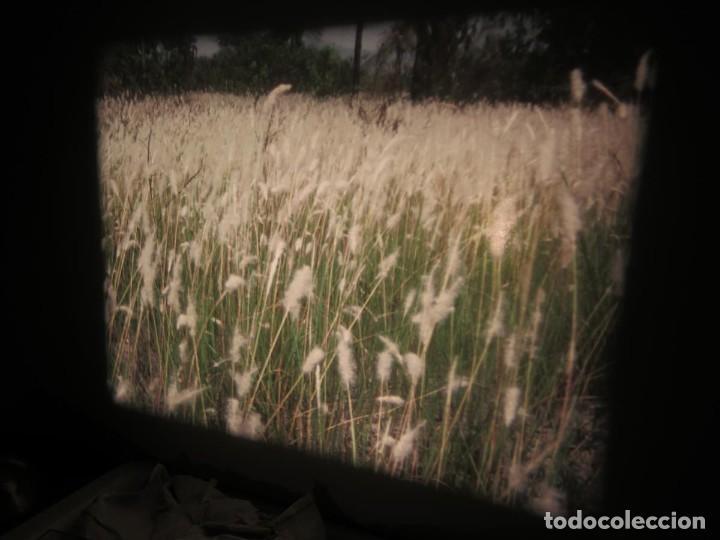 Cine: ANTIGUA BOBINA PELÍCULA-FILMACIONES -AMATEUR-SIERRA LEONA-AÑOS 80 16 MM, RETRO VINTAGE FILM - Foto 30 - 194300253
