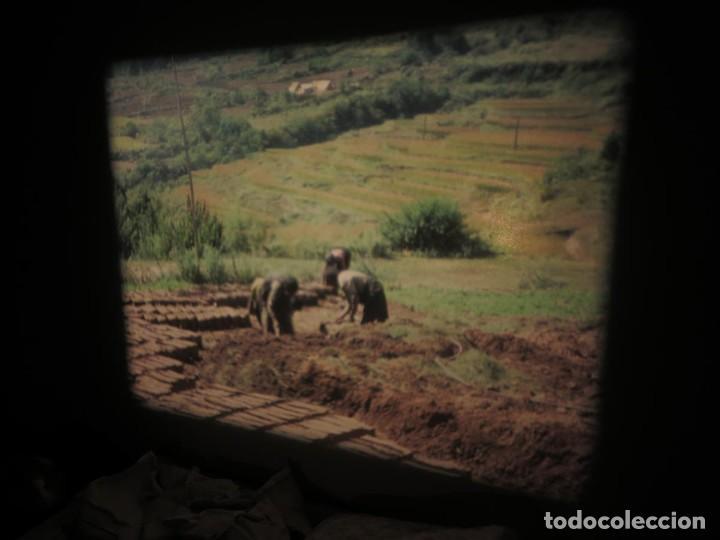 Cine: ANTIGUA BOBINA PELÍCULA-FILMACIONESAMATEUR -BOUTHAN TERMINÉ Á THIMPHU-AÑOS 80-16 MM, RETRO VINTAGE - Foto 2 - 194668903