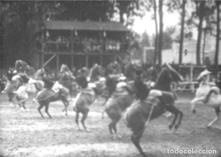 Cine: CABALLOS Y MÁS, AÑOS 50 EE.UU. Película de cine de 16 mm, con imágenes de caballos y otros animales. - Foto 8 - 184727928