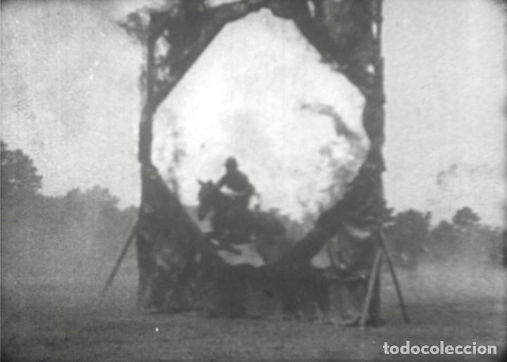 Cine: CABALLOS Y MÁS, AÑOS 50 EE.UU. Película de cine de 16 mm, con imágenes de caballos y otros animales. - Foto 10 - 184727928